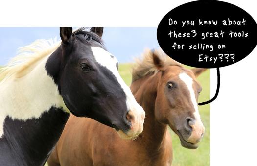 horsespic